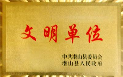 潜山县文明单位