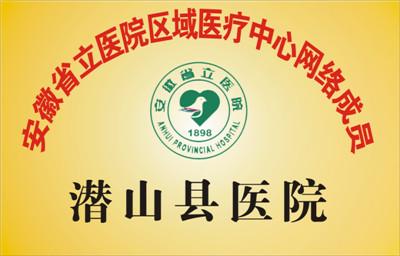 安徽省立医院区域医疗中心网络成员